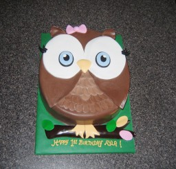 1024x768px First Birthday Owl Cake Picture in Birthday Cake