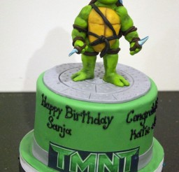 685x1024px How To Make A Ninja Turtle Cake Picture in Cake Decor